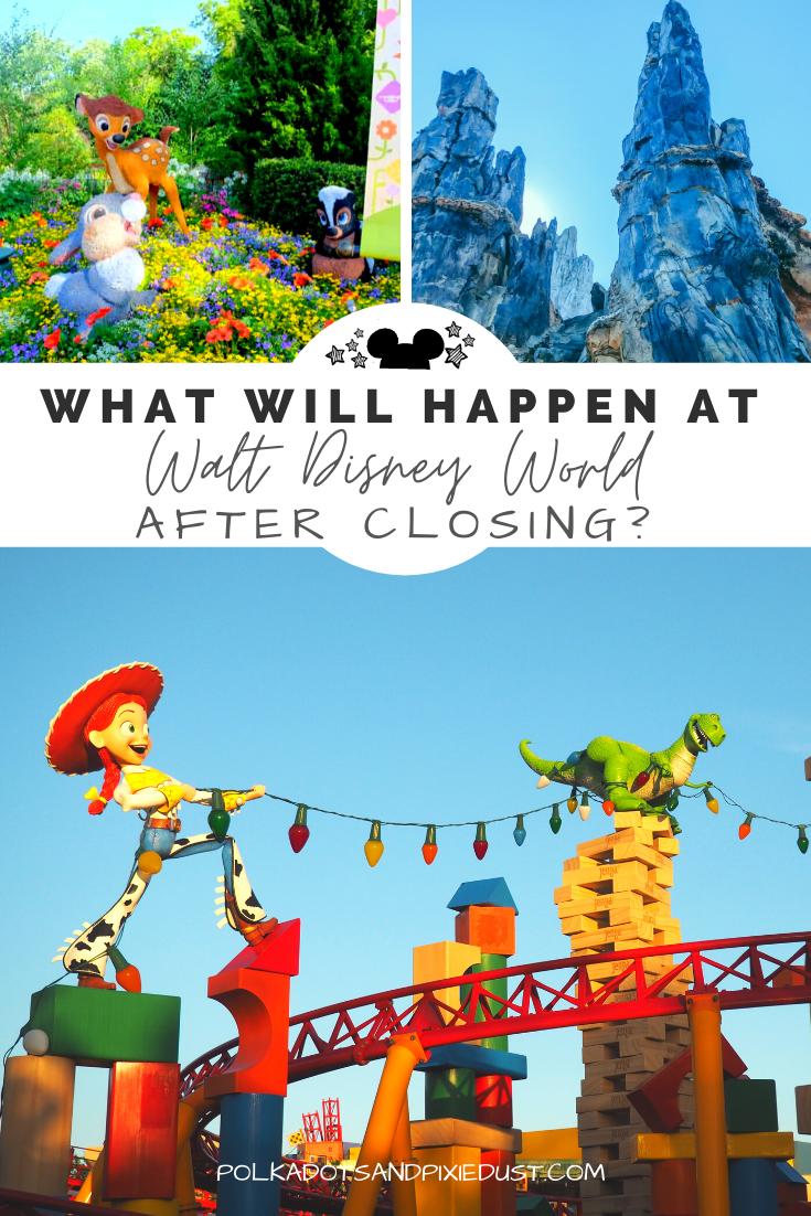 Walt Disney World Plans for 2020 After Closing
