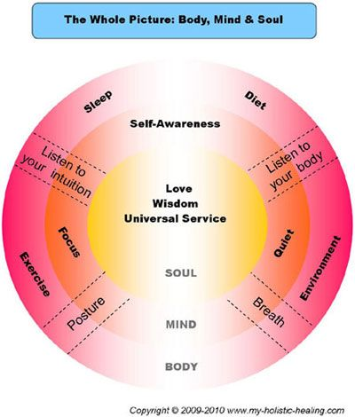 The Soul of Wellness: 12 Holistic Principles for Achieving a Healthy Body, Mind, Heart & Spirit