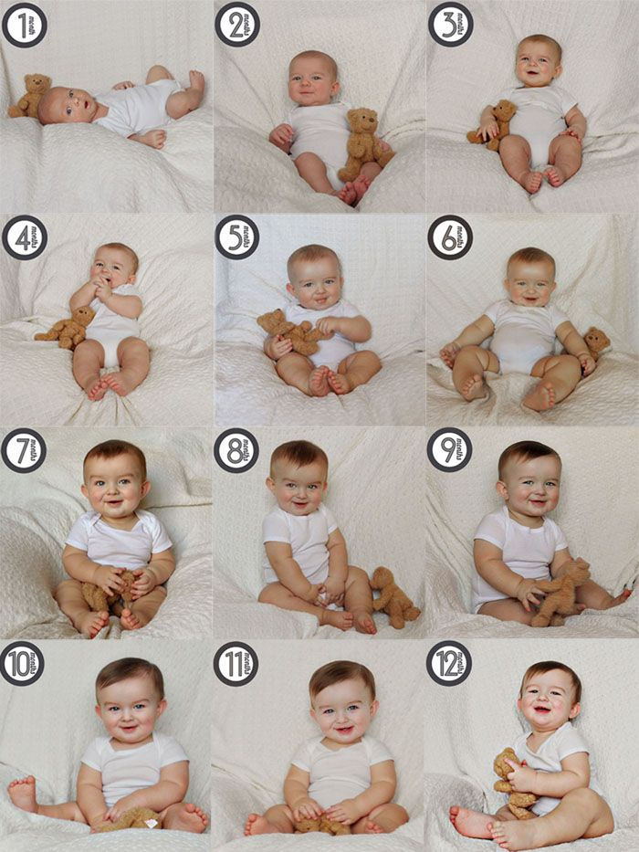 Bon Temps Beignet Monthly Baby Photos Baby Shots Baby Month By Month