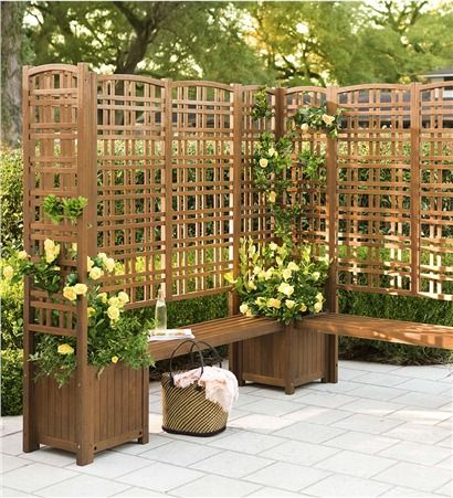 outdoor eucalyptus privacy screens and planters gardens