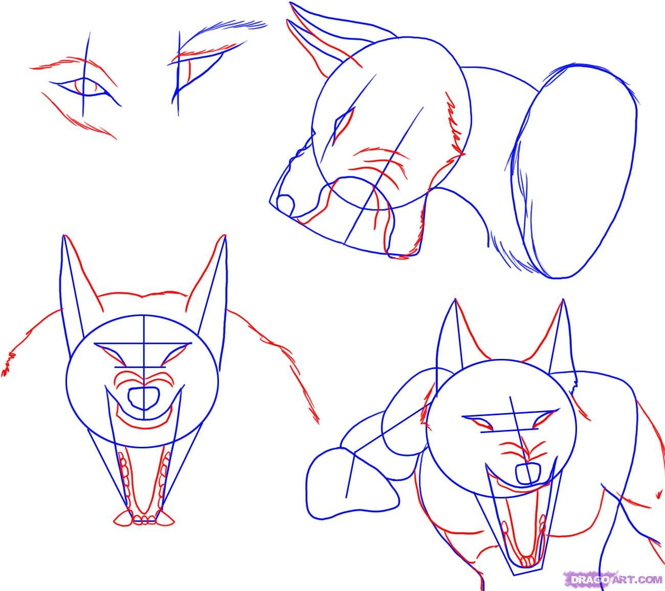 How To Draw A Werewolf Face Head Eyes Step 3 Werewolf Drawing Werewolf Drawings