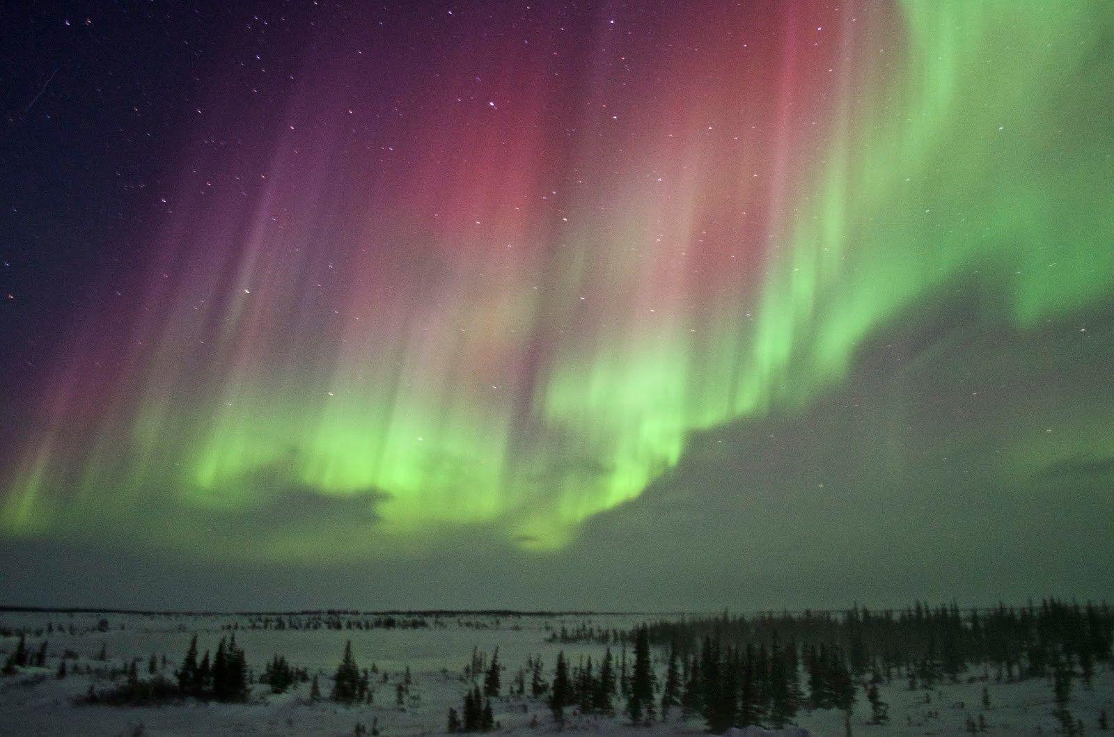Northern Lights Photo By Brian Linda