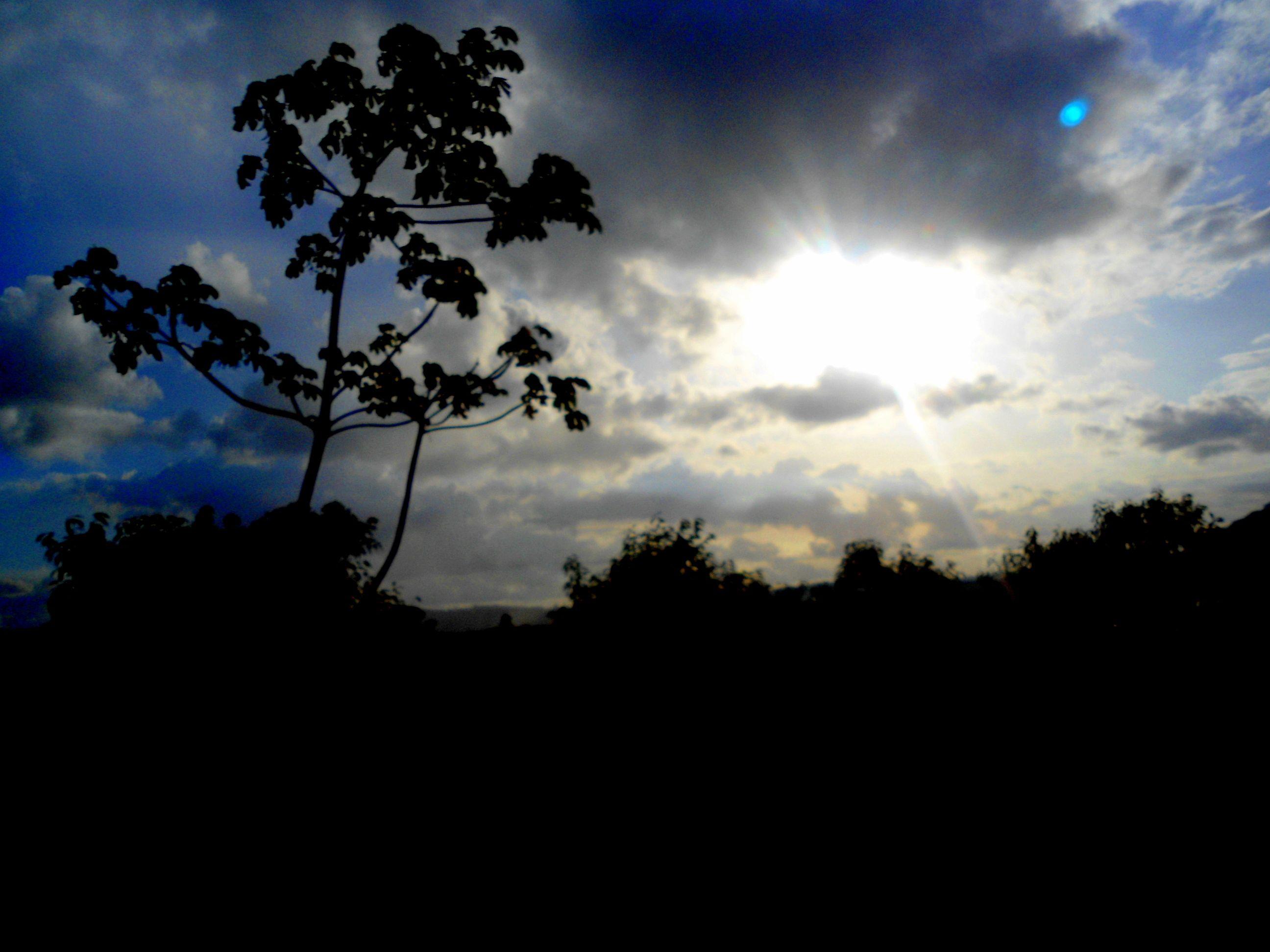 Em algum lugar em Alagoas...