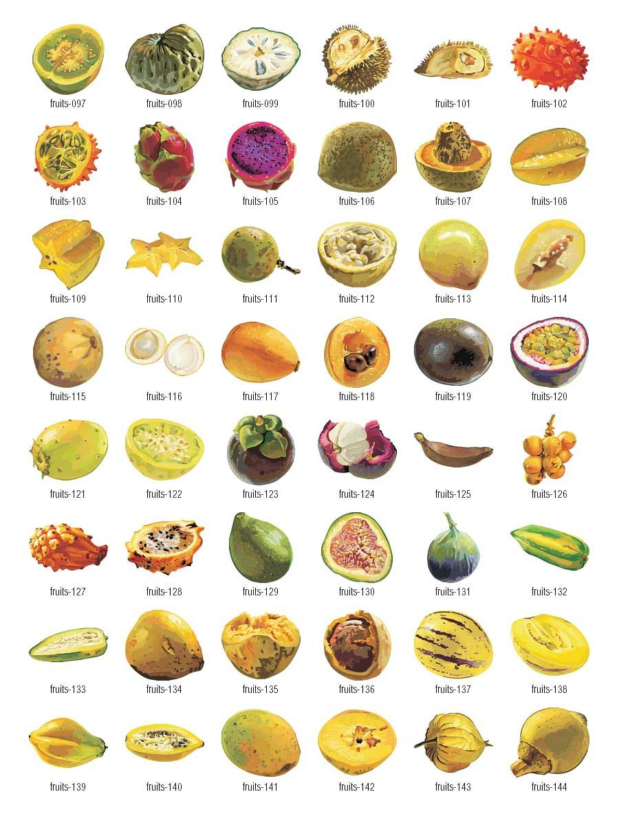 all fruits name with picture in english pdf
