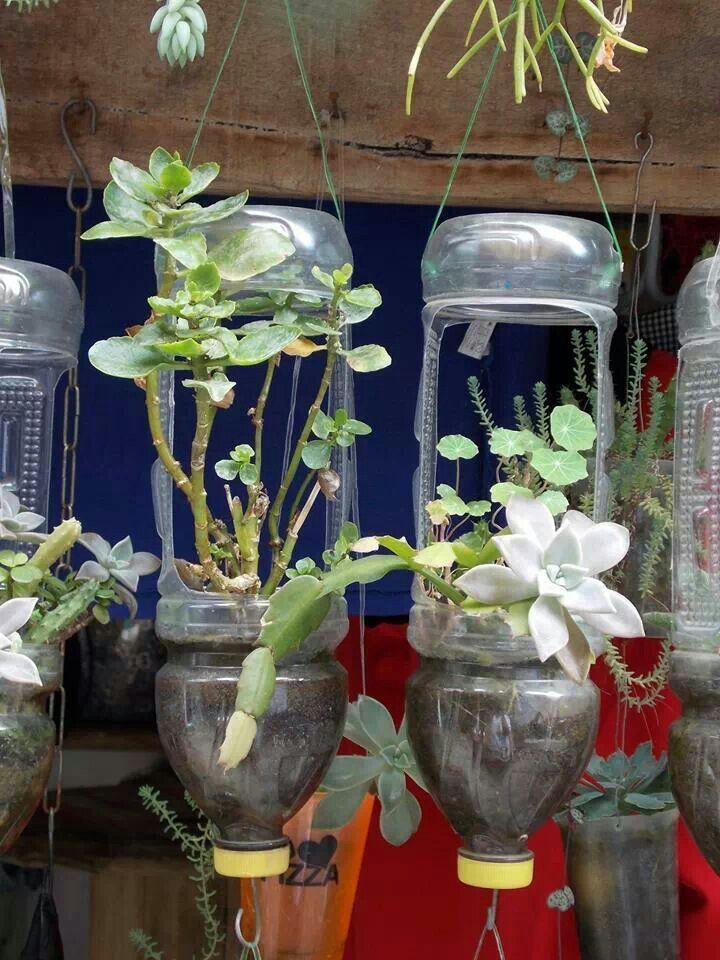 d0932eafa42fd3cf8c4d0e47c5427a3c - Diy Plastic Bottles Hanging Flower Gardens