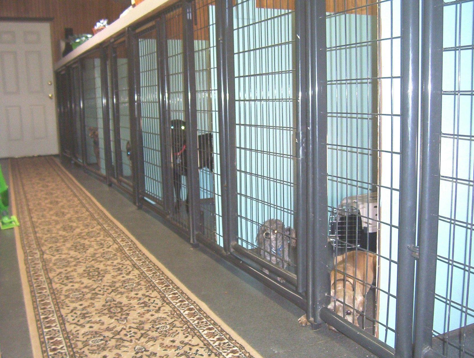 Image Result For Best Dog Boarding Kennel Building Dog Boarding Kennels Commercial Dog Kennel Ideas Dog Boarding
