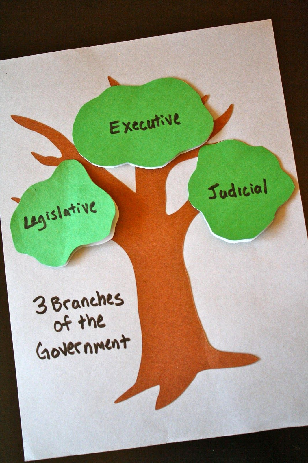 The 3 Branches Of The Government Craft Ccm Gamma Year Week 14 History