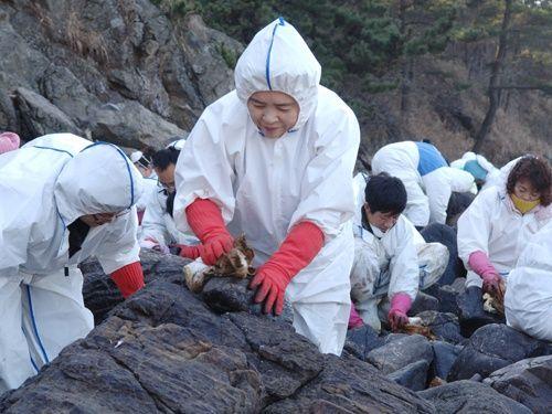 2008년 태안 앞바다 기름유출로 인한 방제작업에 자원봉사자로 참여한 장길자 회장과 국제위러브유운동본부(회장장길자) 회원들. 사진:국제위러브유운동본부(회장장길자)