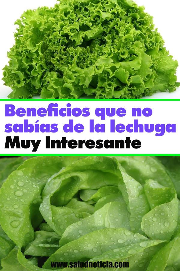 Beneficios Que No Sabías De La Lechuga Muy Interesante Vegetables Lettuce Food