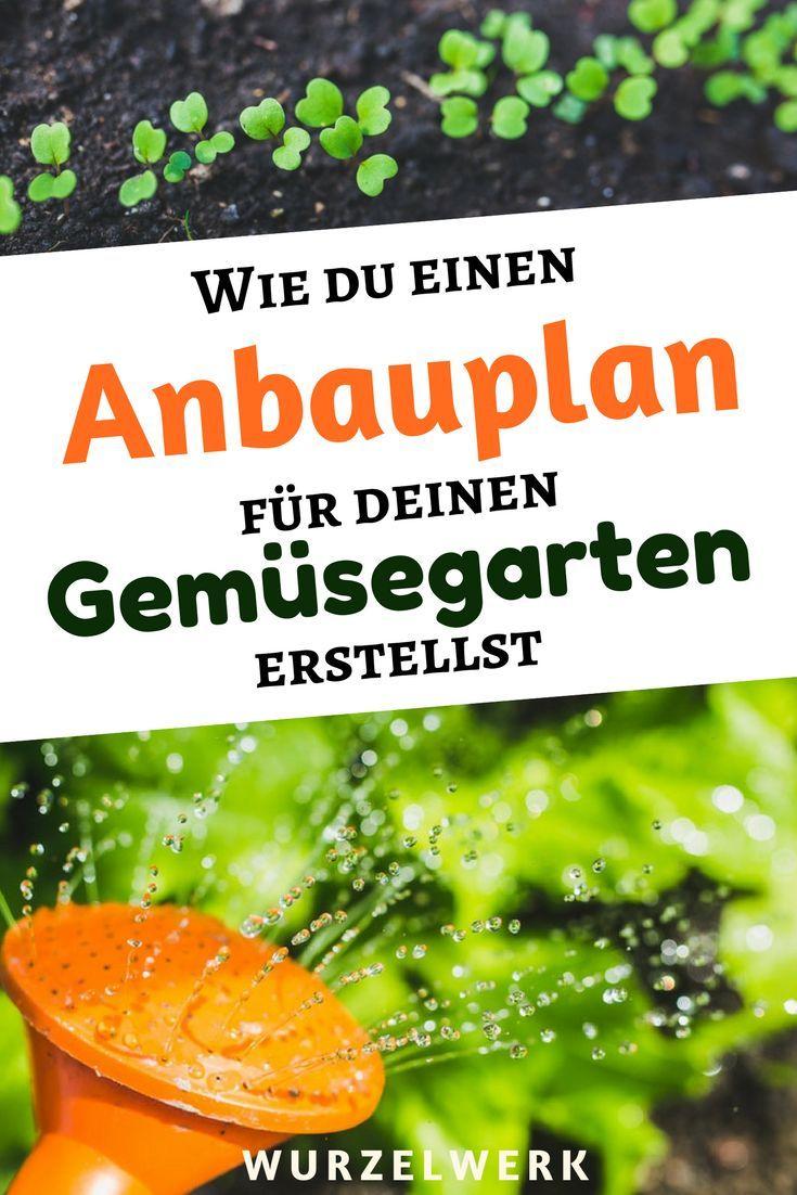 Wie du einen Anbauplan für deinen Gemüsegarten erstellst + Beispielplan #anbauvongemüse