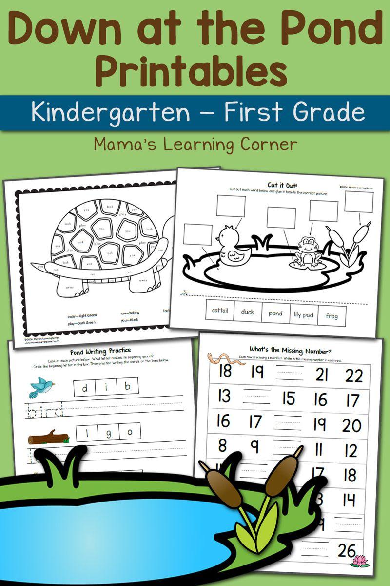 Pond Worksheets For Kindergarten And First Grade Updated For 2016 Kindergarten Worksheets First Grade Kindergarten