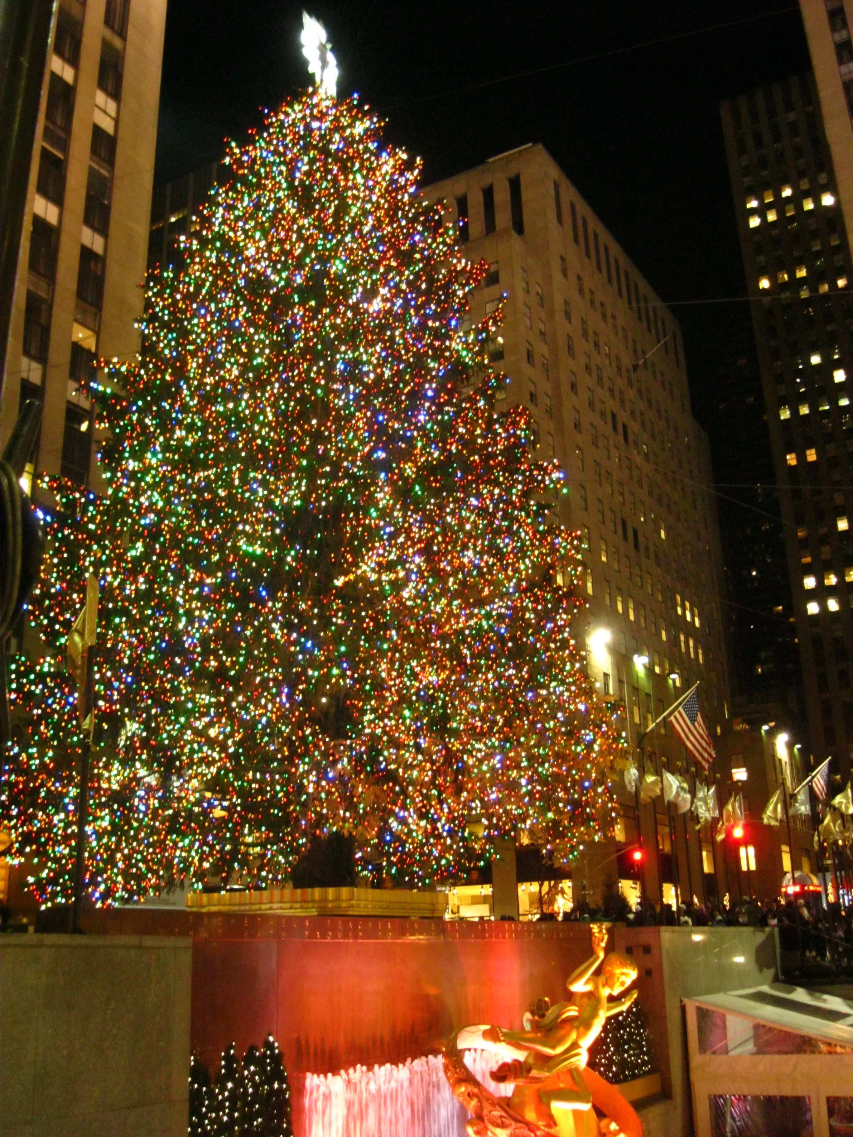 Christmas Trees In New York City Part 2 Extraordinary And