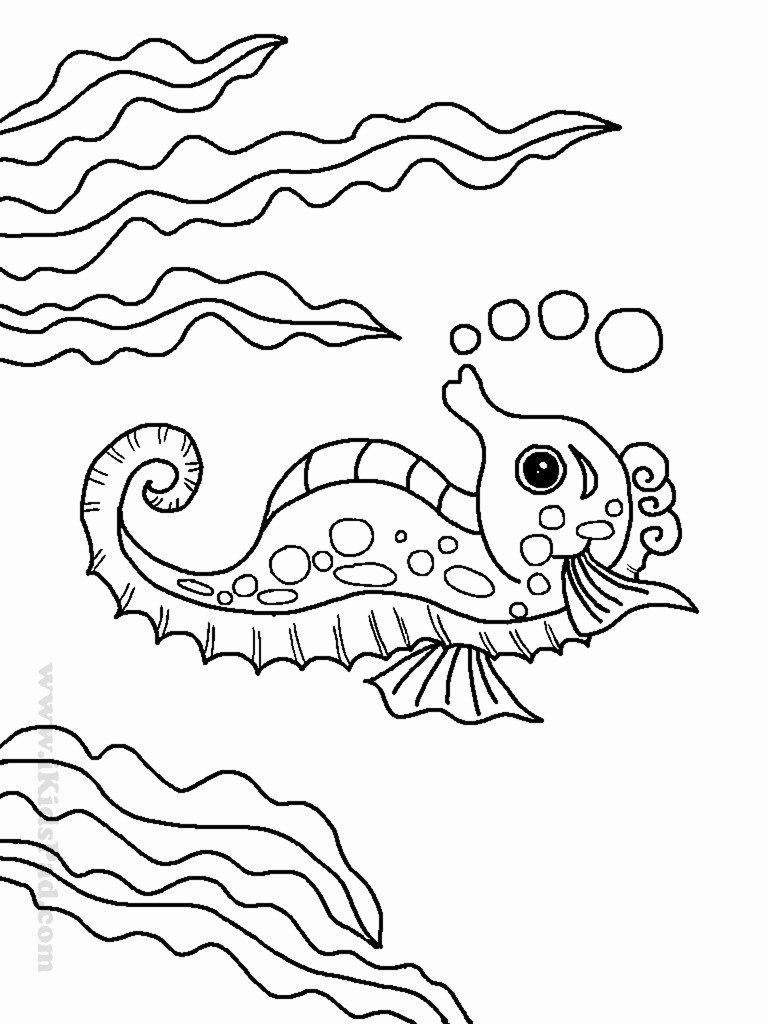 Animal Coloring Videos Luxury Luxury Sea Creature Coloring Sheets Tintuc247