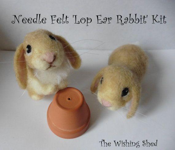 Cute Lop Ear Rabbit Bunny Needle Felt Kit Beginner