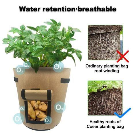 Image result for potato plant bag