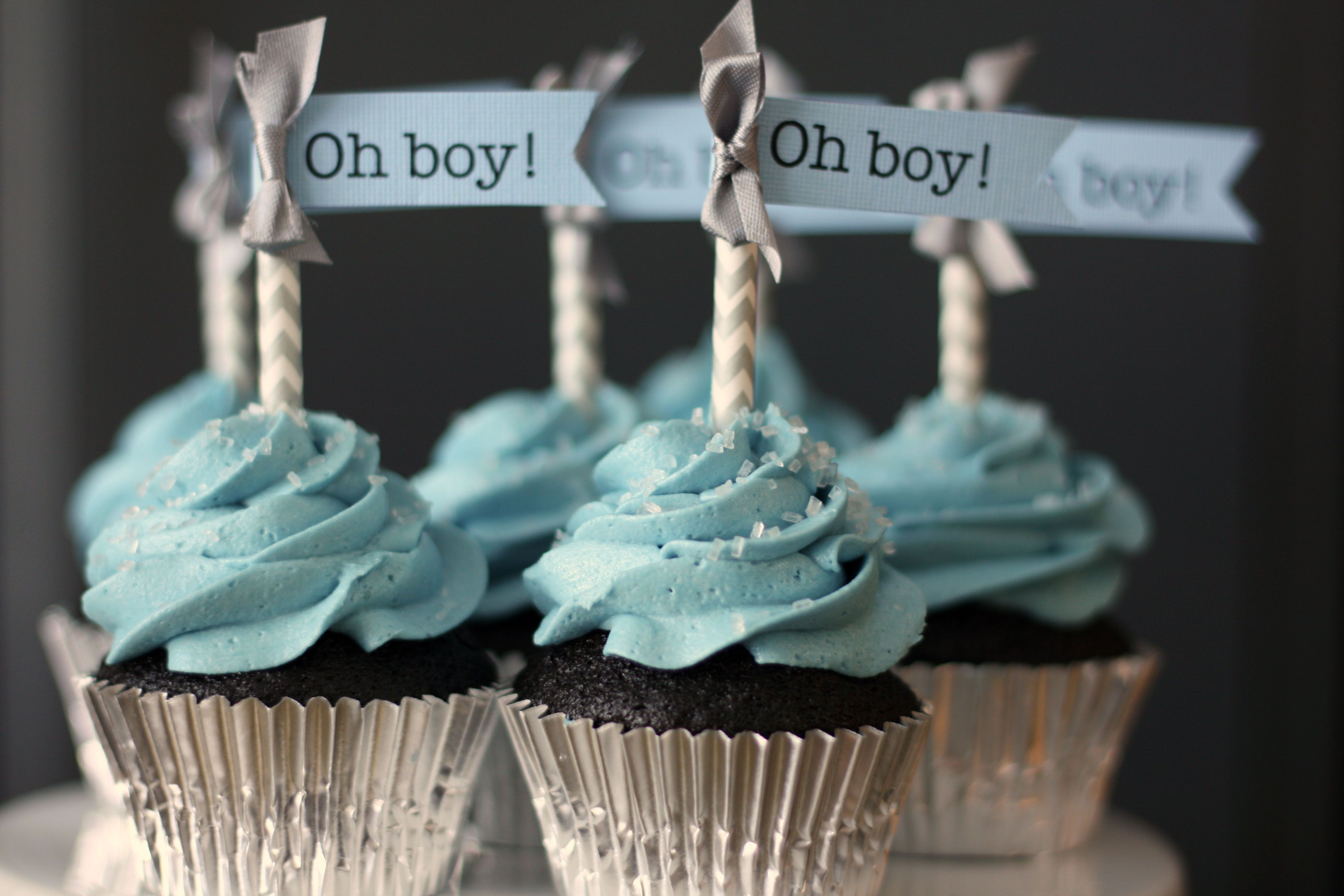 Baby Boy Shower Cupcakes Blue Gray Chevron Frosted Bake Shop