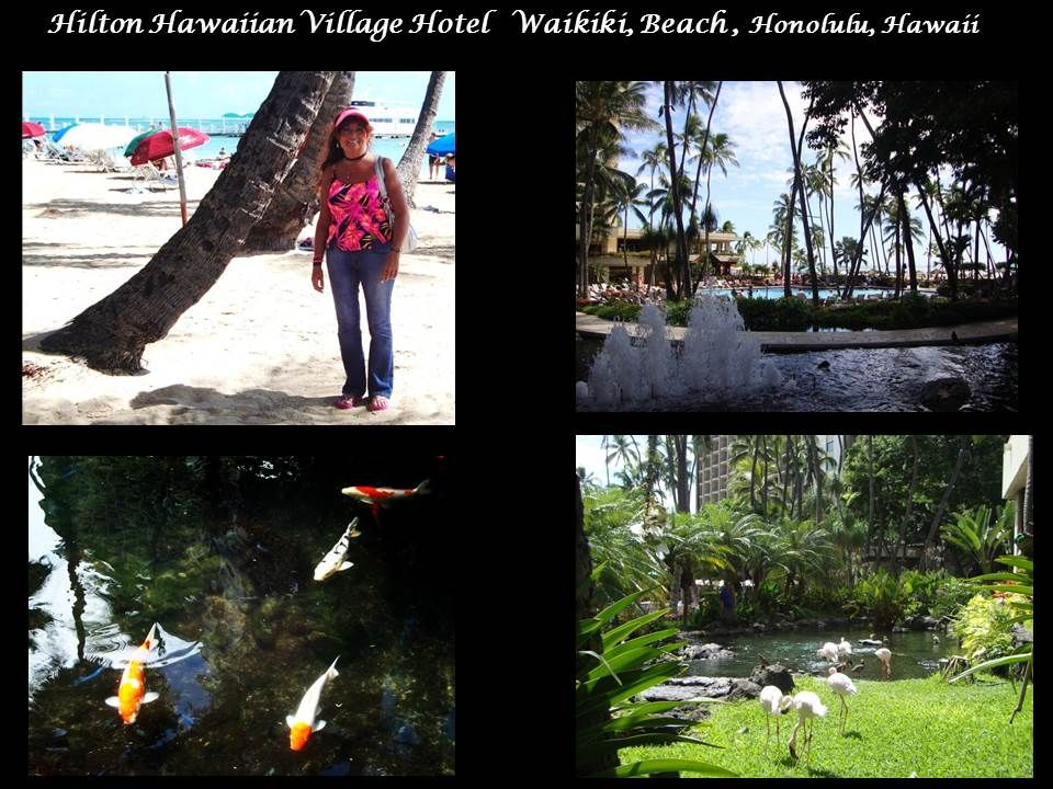 Norwegian Pride Of America Cruise Hilton Hawaiian Village Hotel Waikki Beach In Honolulu Oahu Where Elvis Made Blue Hawaii
