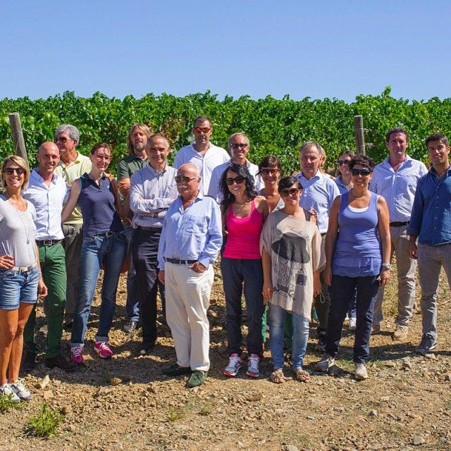 It takes a village to make wine! #cecchiharvest