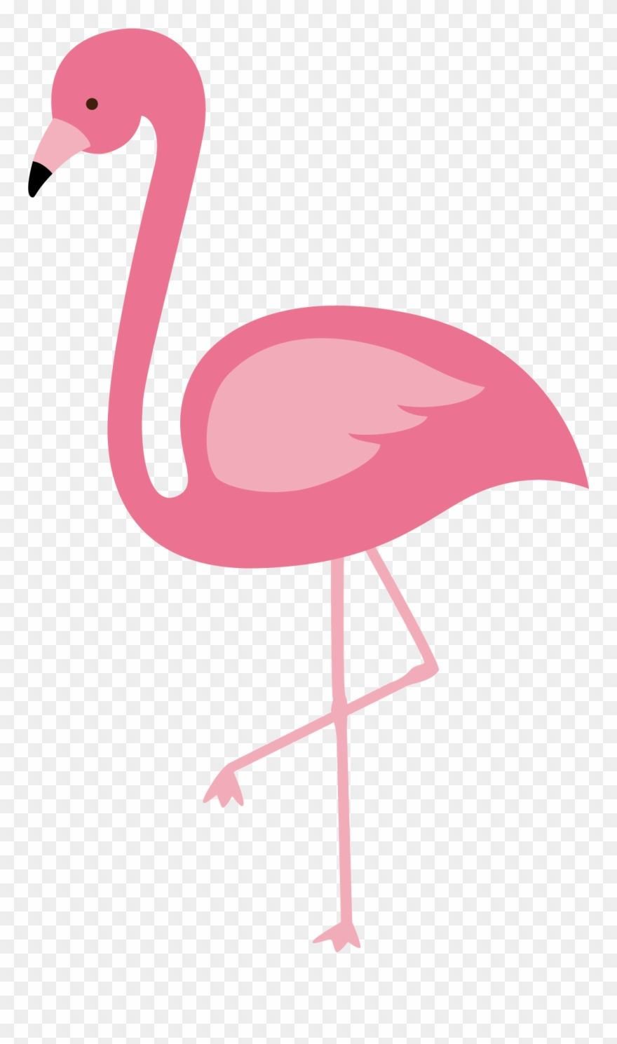 Flamingo Clipart Pink Flamingo Vector Flamingo Png Transparent Png 798503 Is A Creative Clipart Download The T Flamingo Vector Flamingo Clip Art Flamingo