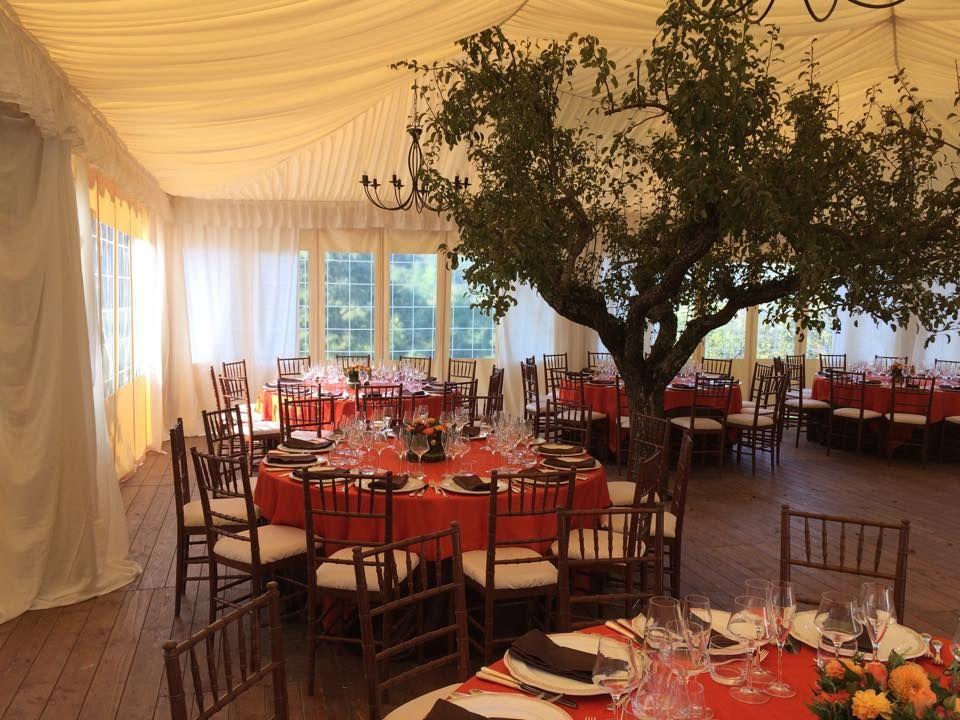 Sedie Matrimonio ~ Matrimonio d autunno coordinato fiammato marrone e arancio sedia