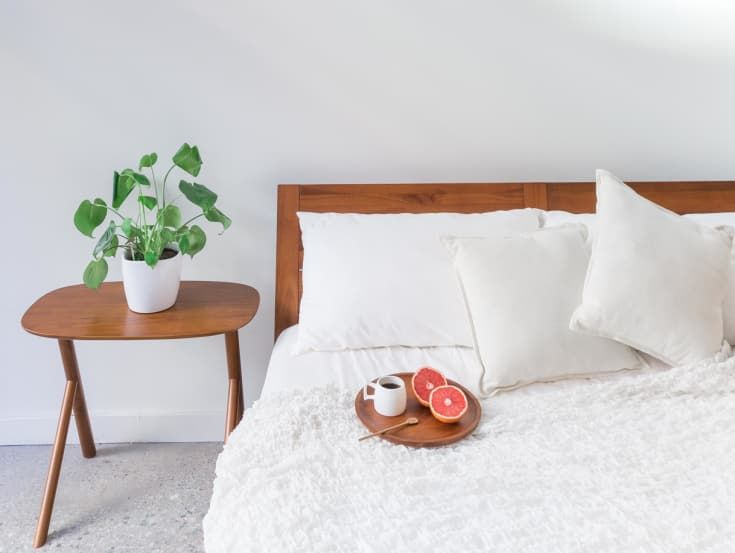 The One Room Where You Shouldn\u0027t Keep Tons Of Plants, According To