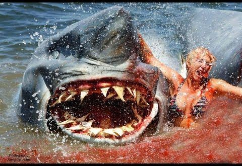 Jaws Full Movie Download In Hindi