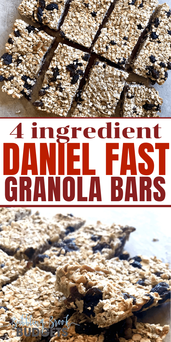 Daniel Fast Granola Bar Recipe - Just 4 Ingredients! #fastrecipes