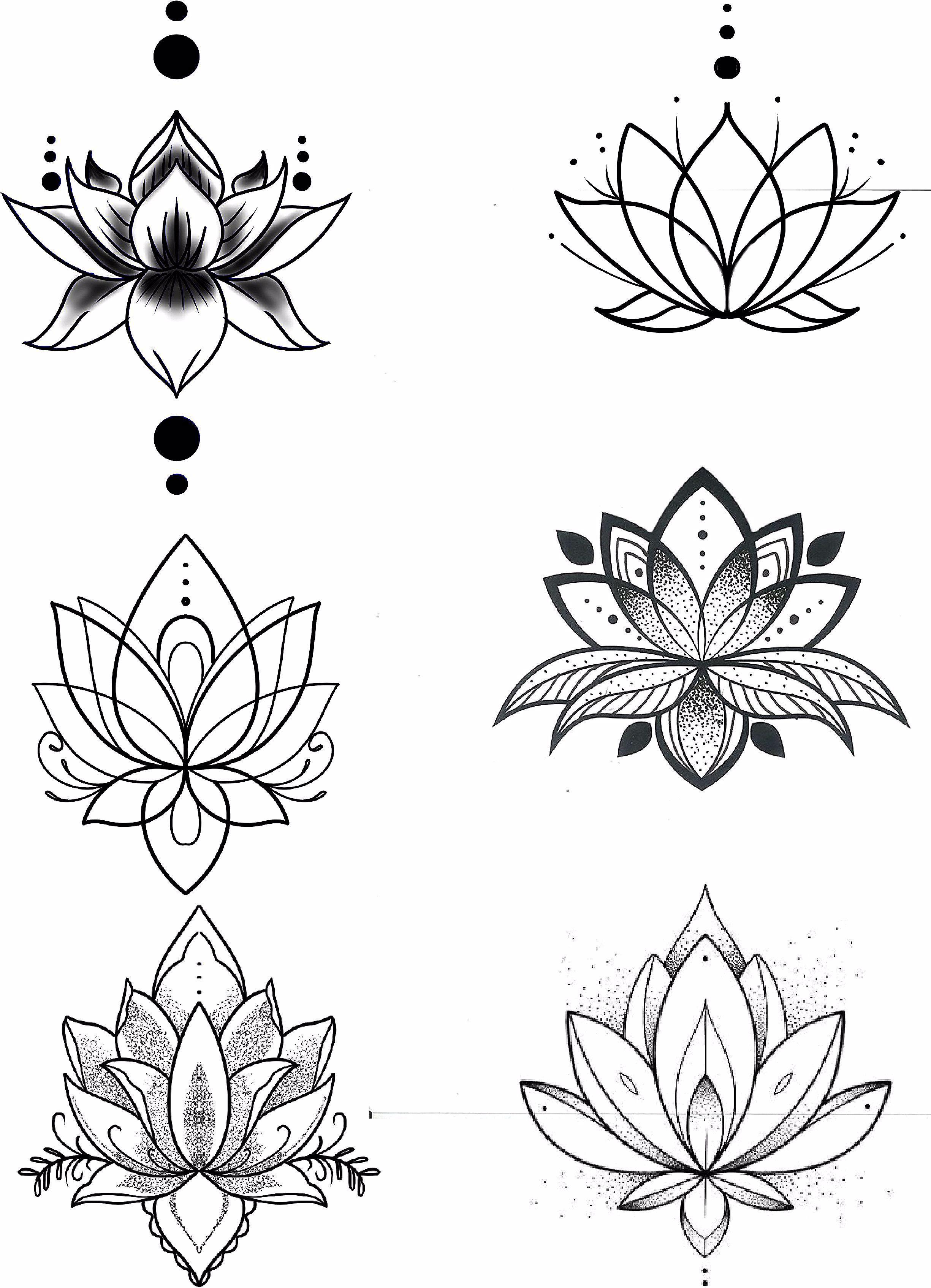 Fleur De Lotus Fleur De Lotus Fleur Lotus