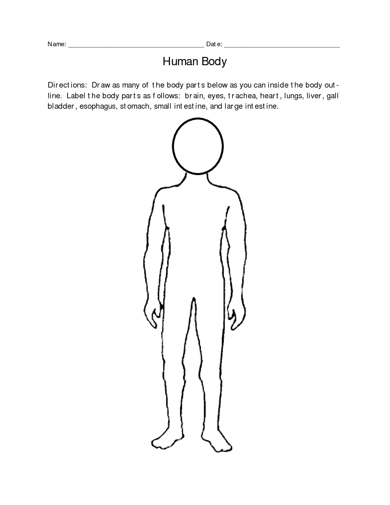 Blank Human Body Diagram