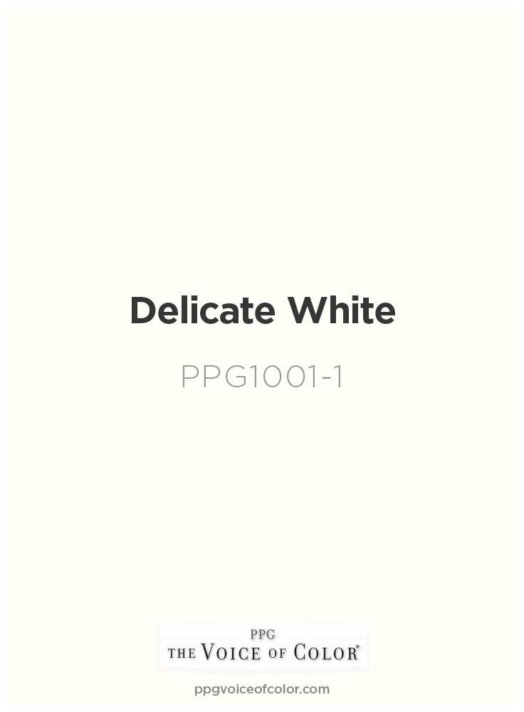 Clean White Paint Color By Ppg Voice Of Delicate Ppg1001 1