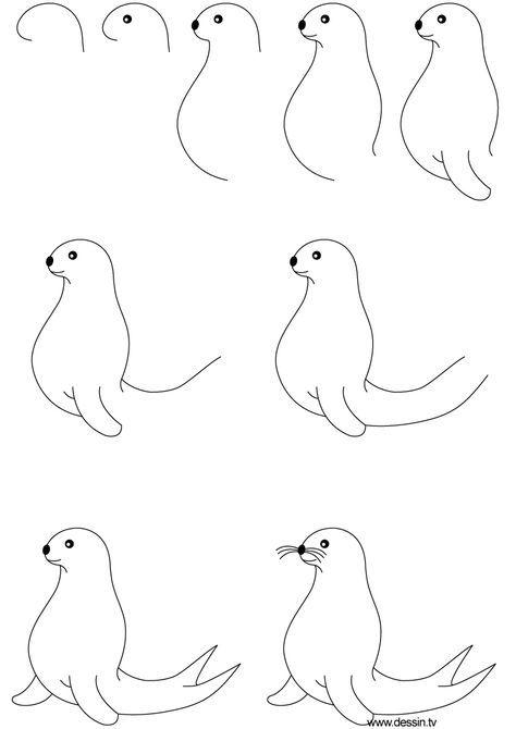 Seehund zeichnen   Drawing   Pinterest   Zeichnen, Tiere zeichnen ...