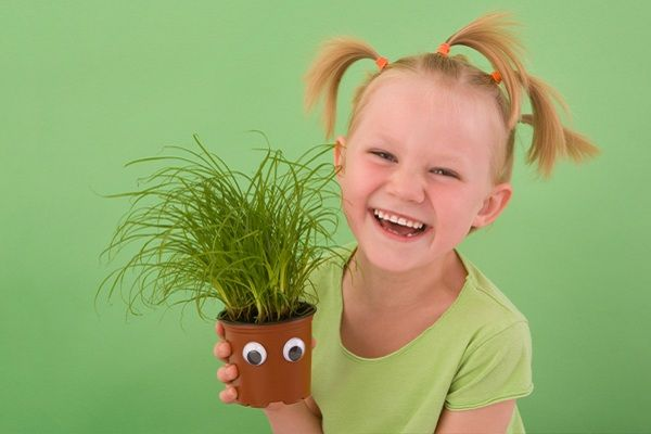 8 Eco-friendly party favors for kids | Party like a rockstar | Kid