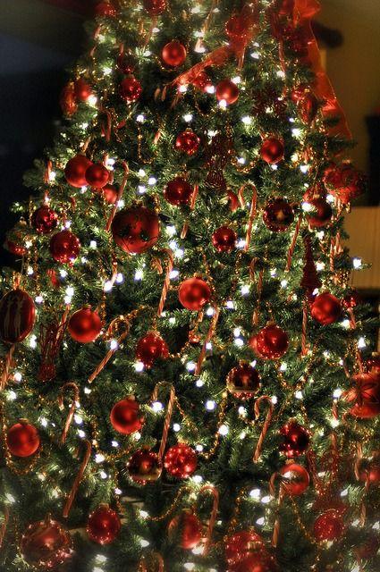Albero Di Natale Tumblr.Log In Tumblr Christmas Christmas Tree Decorations Beautiful Christmas Trees