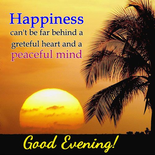 Good Evening Quotes Good Night Evening Quotes Evening Greetings