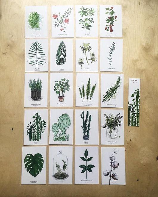 komplet 20 kart pocztowych botanicznych print autorskich rysunków i akwareli. papier 300gr format kartki to 10x15 cm...