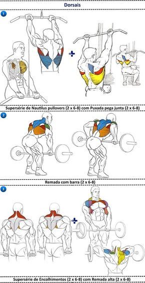 Heavy Duty \u2013 O programa de treino Gym - workout char template