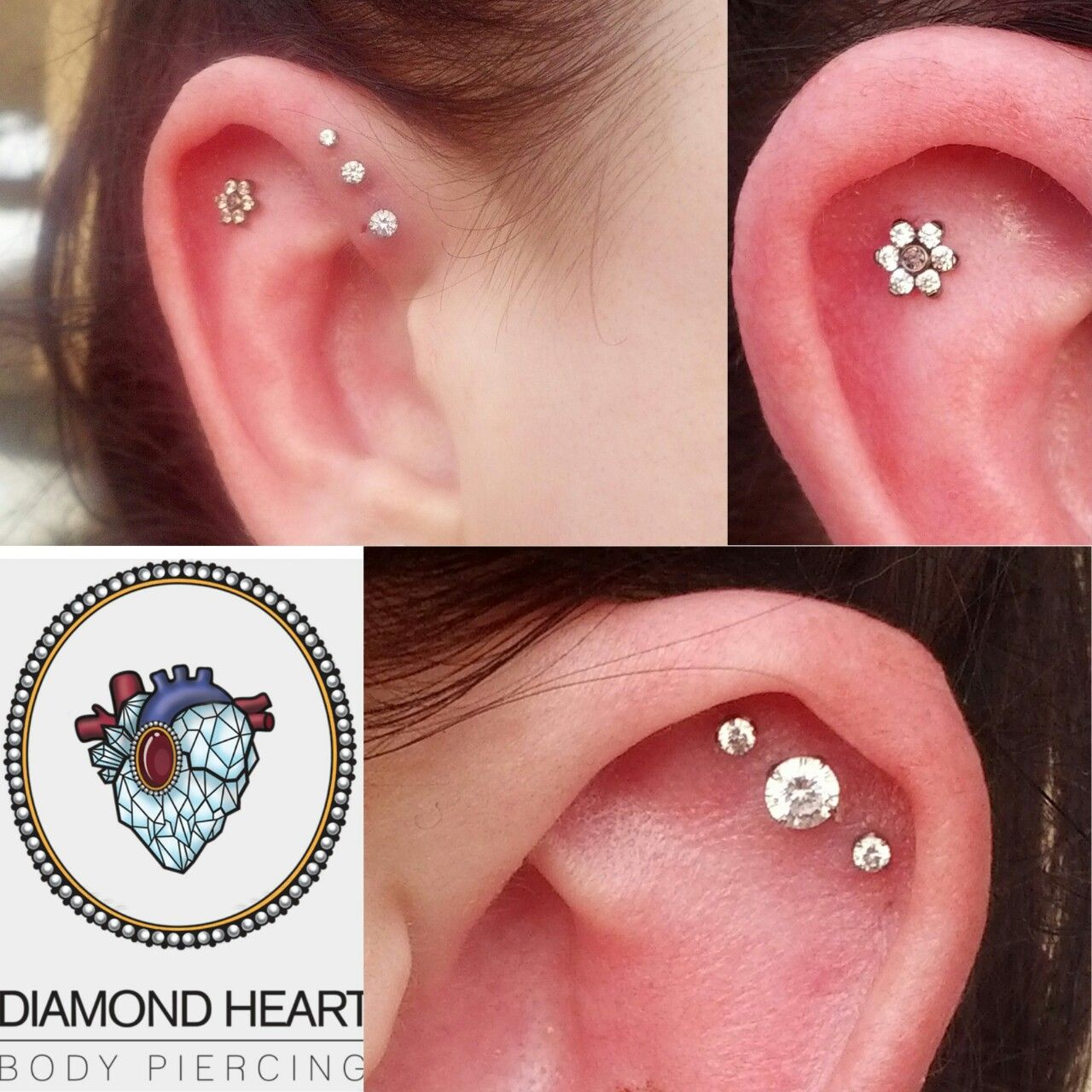 3mm nose piercing  Fresh helix with ANATOMETAL flower and healing triple forward helix