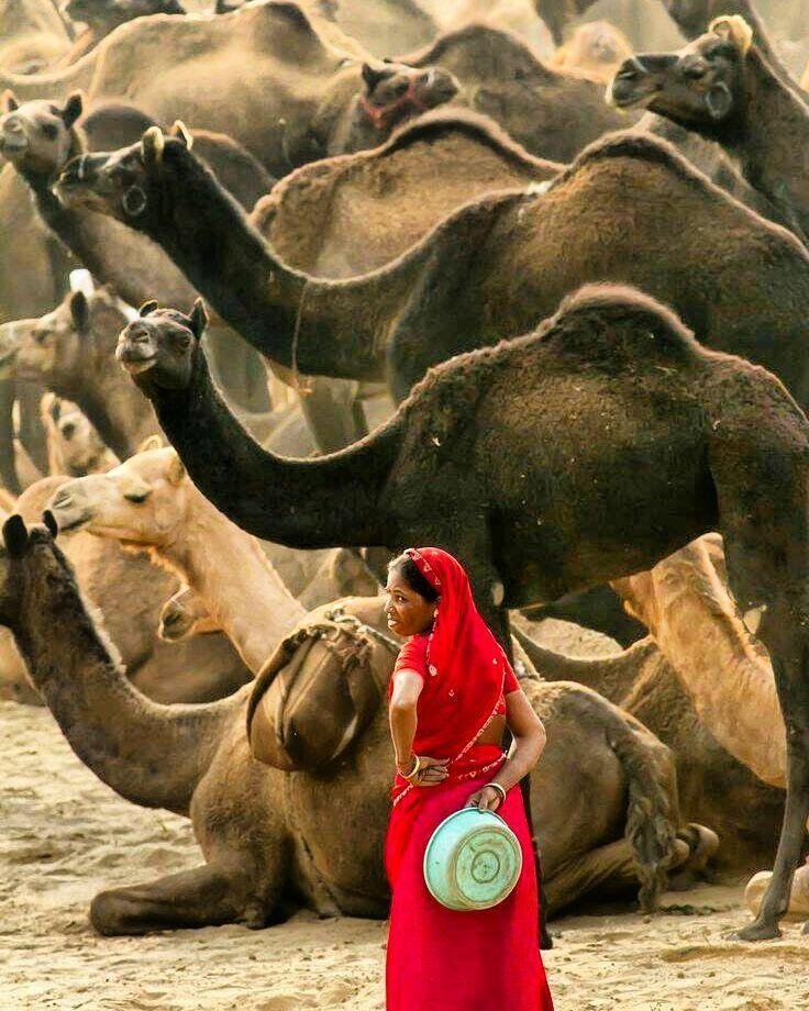 Quando seu passado chamar não responda. Não há nada novo a ser dito.  Foto: Chaitanya Deshpande