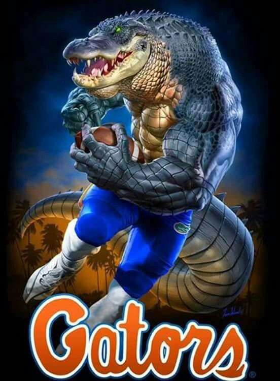 Pin By Paul Nelson On Sports Teams Florida Gators Football Florida Gator Memes Florida Football