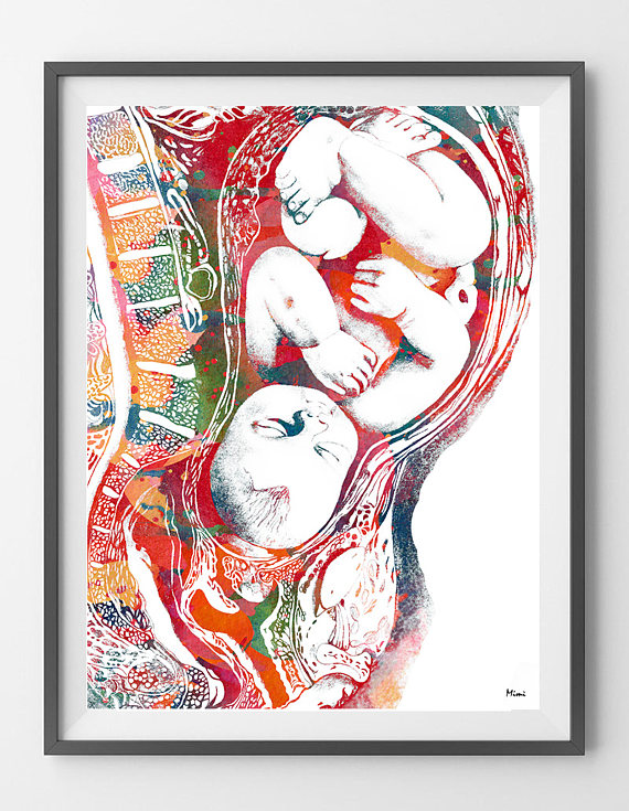 Pregnancy watercolor print full term baby in womb poster ginecology ...