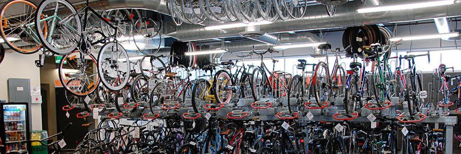 Bicycle Cellar - Bike Rental in Tempe & Bicycle Cellar - Bike Rental in Tempe | Destinations - Phoenix AZ ...