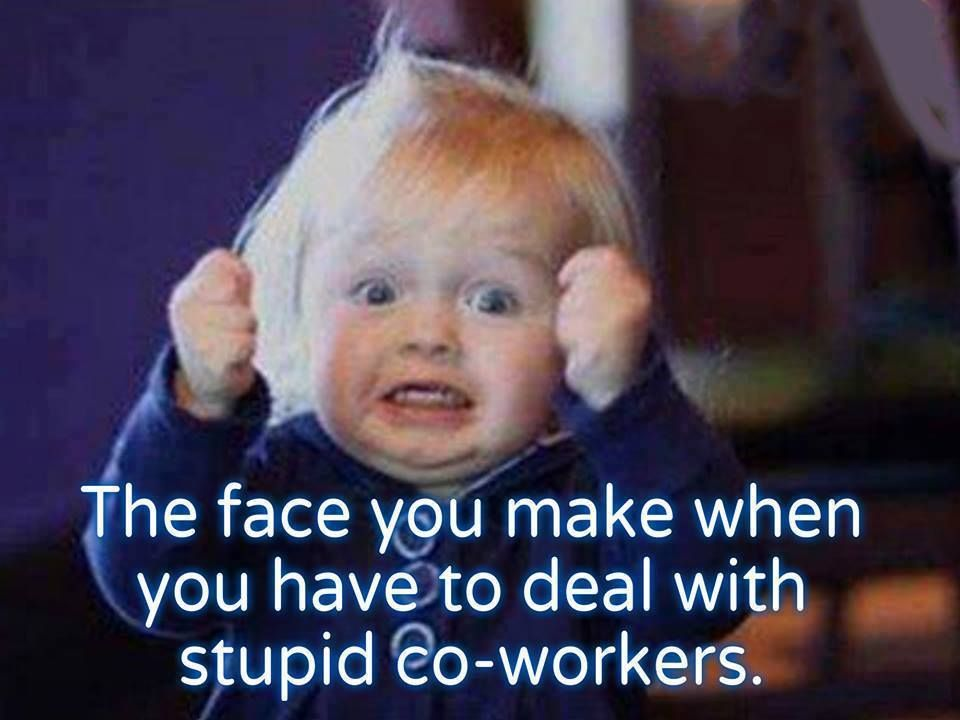 Pin By Bonnie Storm On Me In A Nutshell Work Quotes Funny Funny Quotes Work Humor