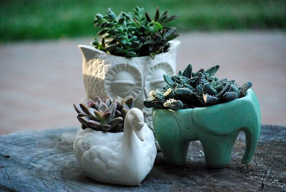 Elephant Planter For Succulents Ceramic Planters Animal Planters