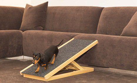 Dog Ramp Online Pet Más