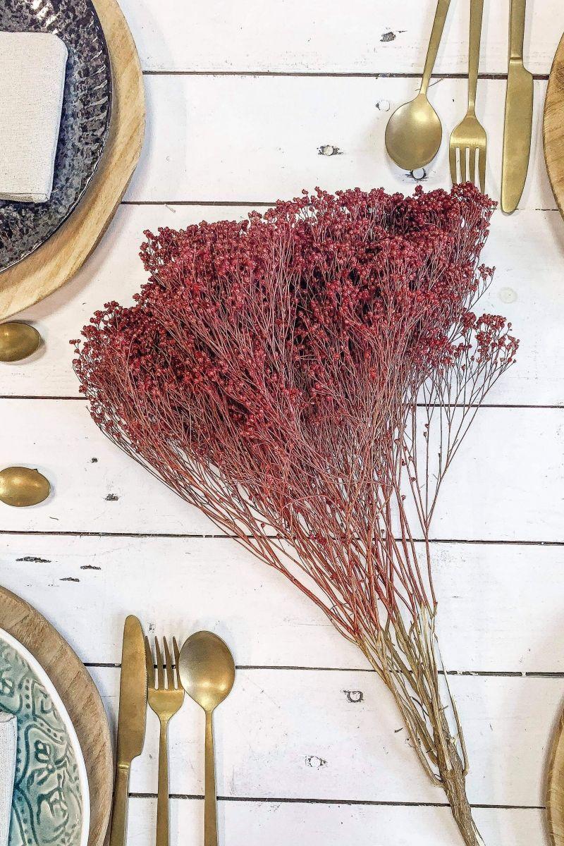 Bouquet de fleurs séchées broom bloom rouge 50cm