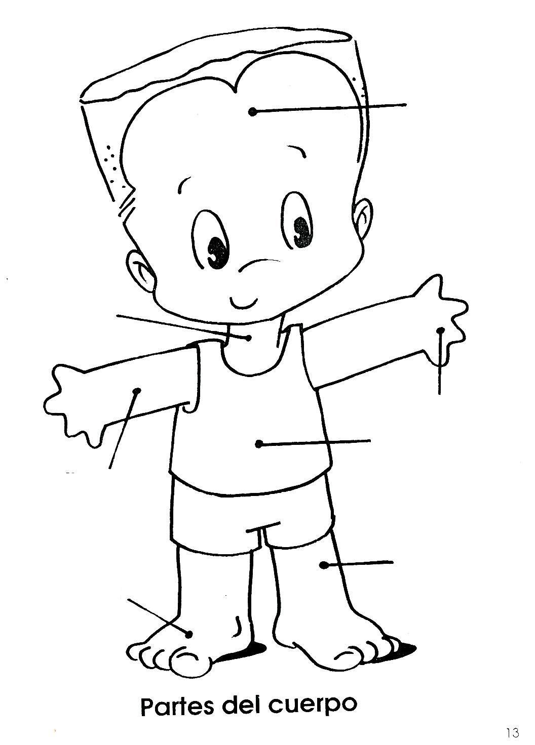 Pin De Biblio Geek En Cuerpo Humano Partes Del Cuerpo Humano El Cuerpo Humano Infantil Partes Del Cuerpo Preescolar