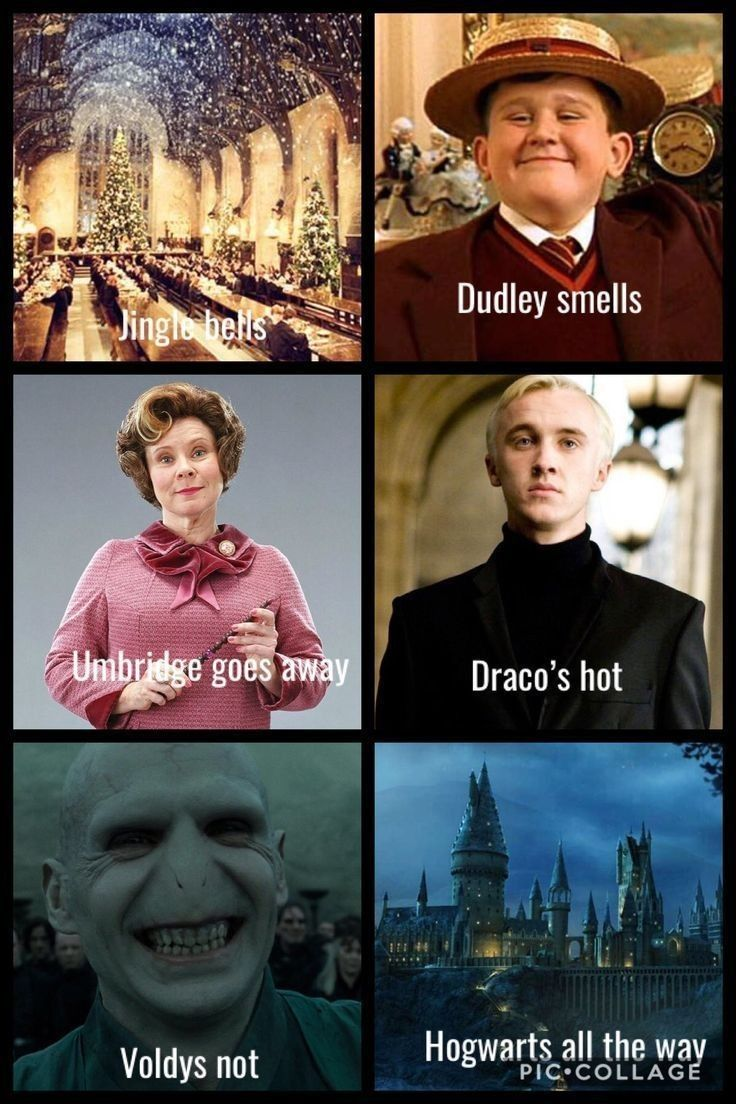 Bells Harry Jingle Memes Potter Top Top 18 Harry Potter Memes Jingle Bells These Top 18 H Harry Potter Jokes Harry Potter Song Harry Potter Memes