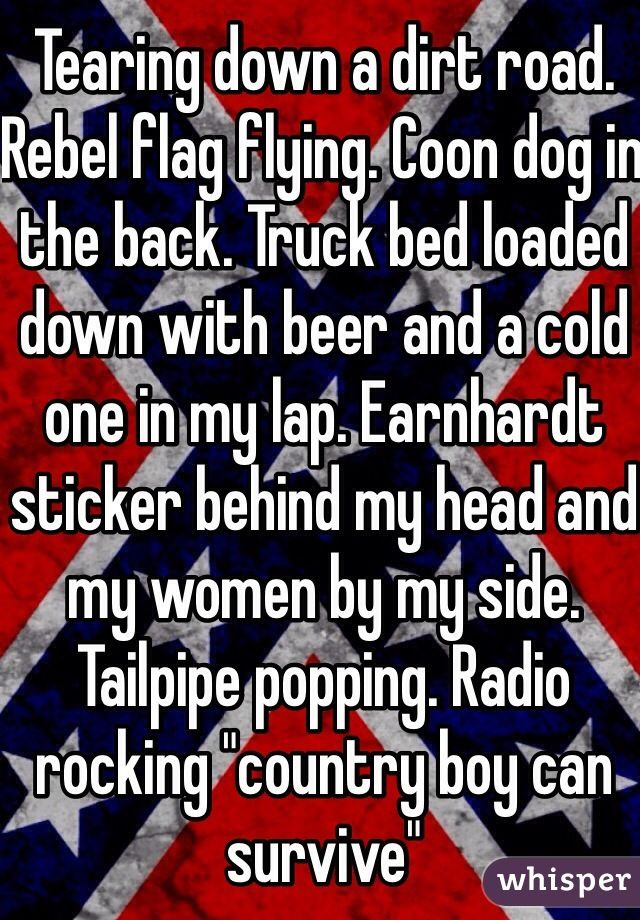 Tearing Down A Dirt Road Rebel Flag Flying Coon Dog In The Back - Rebel flag truck decals   how to purchase and get a great value safely