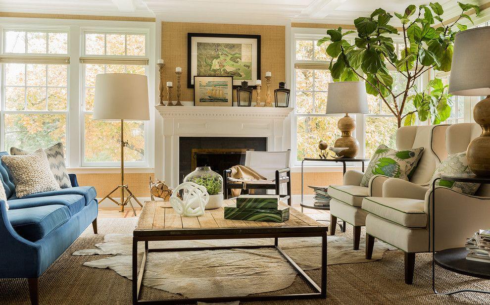 Transitional Living Room Image Ideas Innovative Large House Plant  (990×616)   New House Design Ideas   Pinterest   House