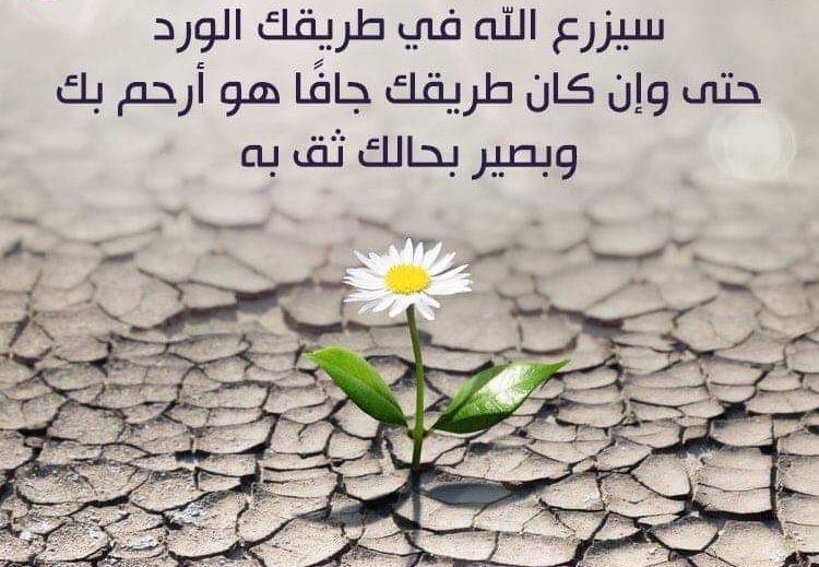 خواطر صباحية دينية Arabic Quotes